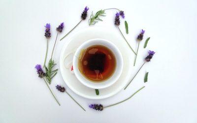 Le choix de votre machine à thé pour assurer sa santé habituelle